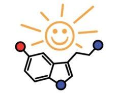 Serotonin hormonu - Mutluluk Hormonu